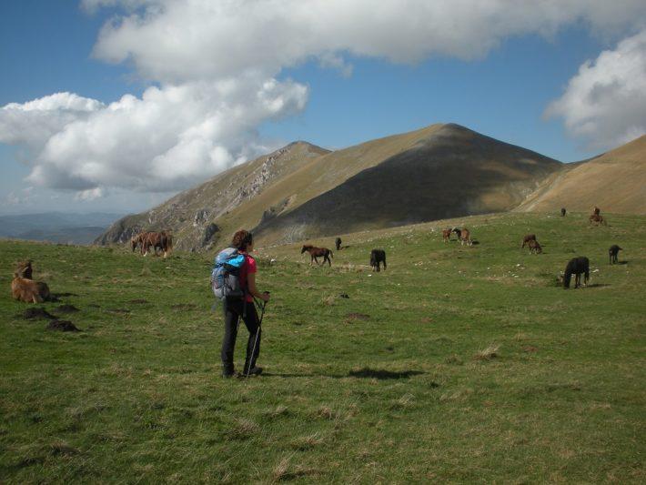 :. 23/08 – Escursione Paradisi Sibillini: Il Monte Patino da Castelluccio