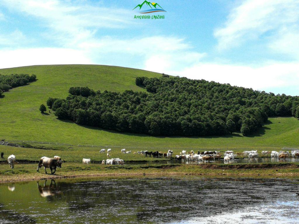 :. 19/12 – Escursione ai selvaggi Pantani di Accumoli e scenari invernali