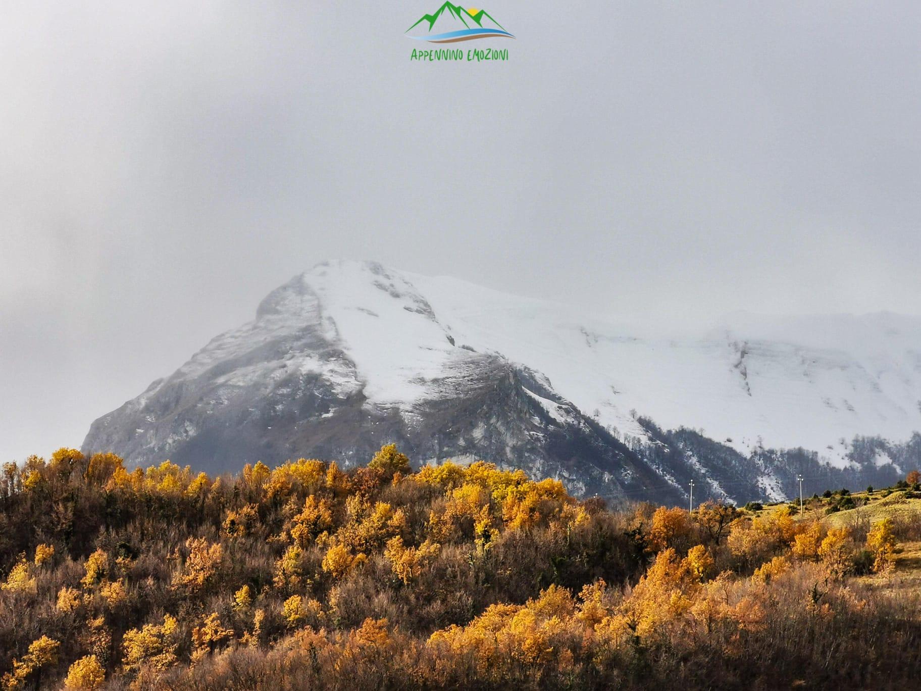 :. 01/11 – Escursione Emozioni d'Autunno: Boschi dipinti a Garulla e Formaggi