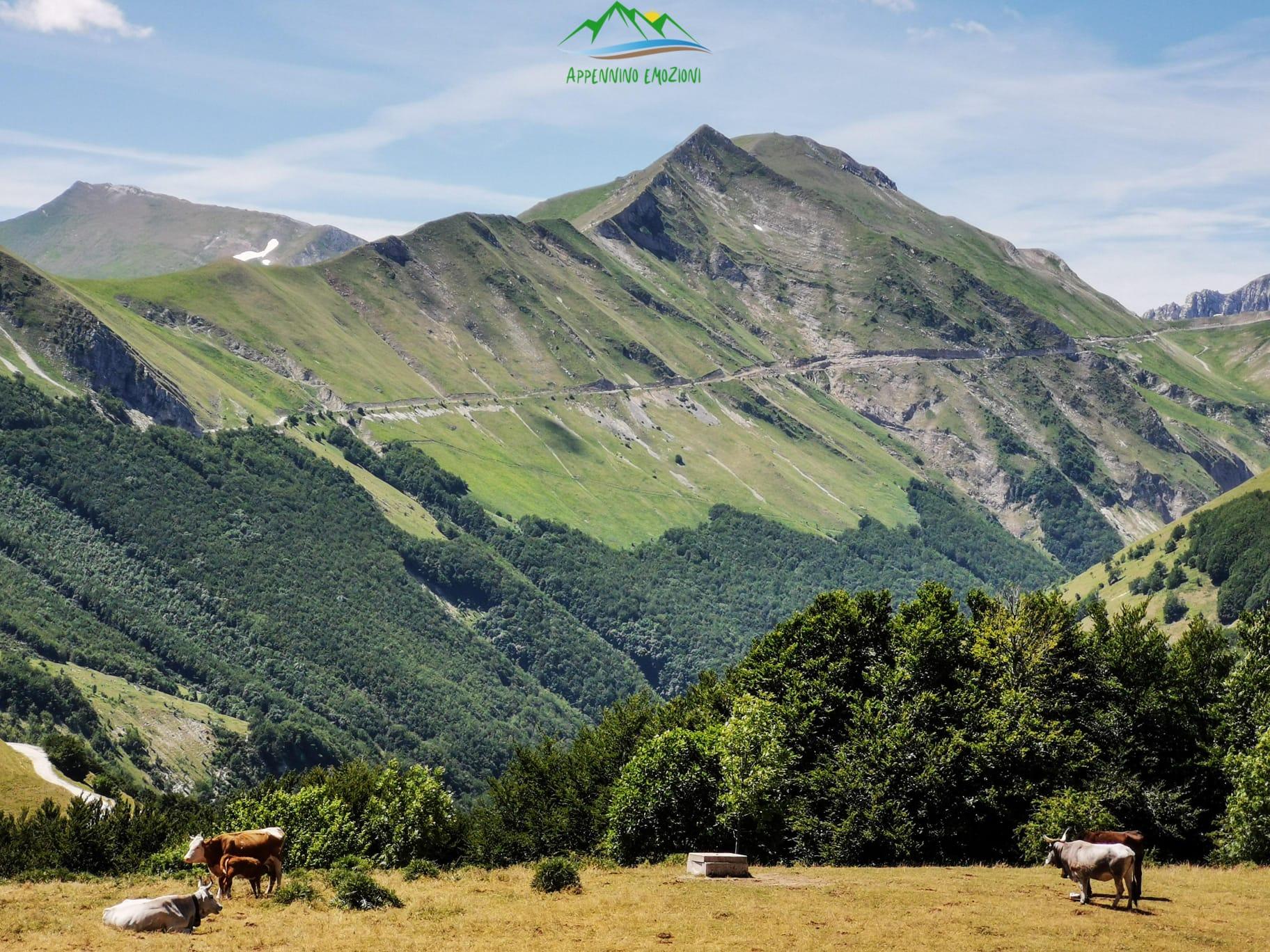 :. 15/08 – Escursione di Ferragosto: Anello Panoramico Sassotetto/Pintura
