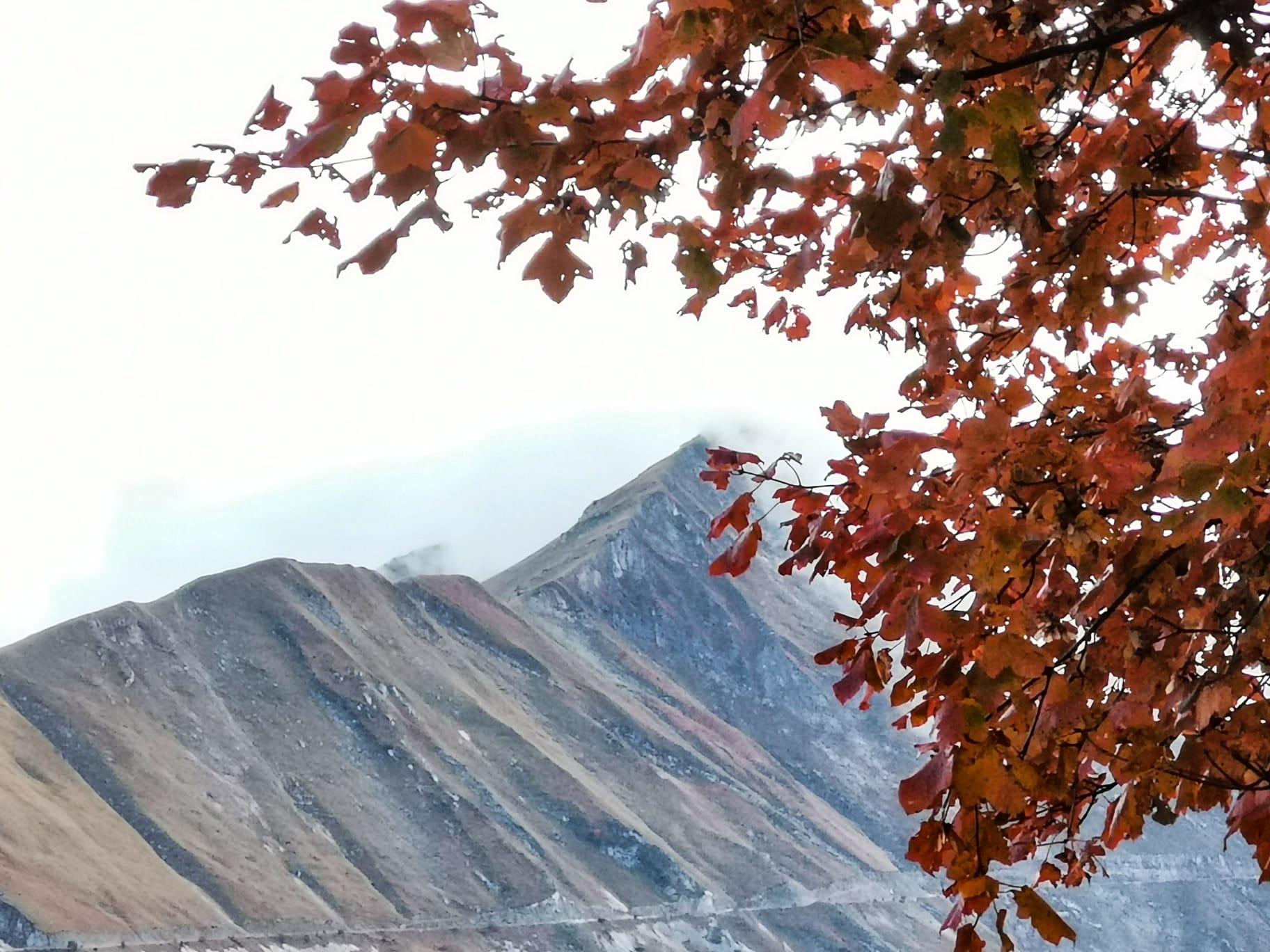 :. 31/10 – Escursione Pomeridiana Emozioni d'Autunno: Fonte dell'aquila